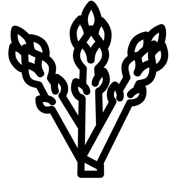 Icoon asperge